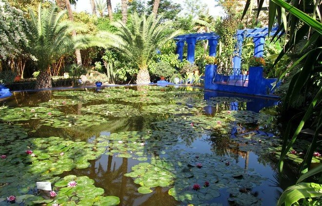 Spend time in the French Quarter and visit the enchanting Majorelle Garden of the French painter and botanist Jacques Majorelle.