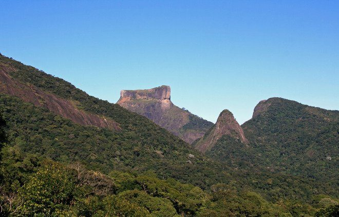 Ride through the Tijuca National Park rainforest in an open-top Jeep during this half-day trip from Rio, including a stop in the largest waterfall of the Forest, the Cascatinha de Taunay.